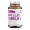 BACILLUS SUBTILIS PLUS 90kapslit